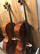 violoncelles